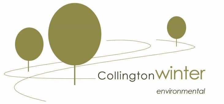 Collington Winter