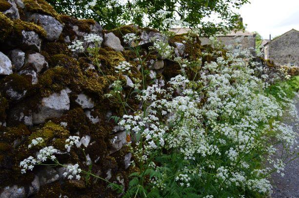 Landscape architects scotland
